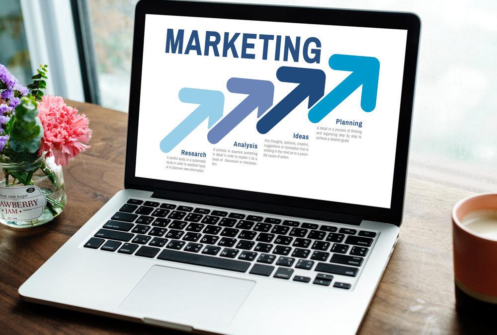 Le marketing est-il essentiel dans une formation commerciale ?