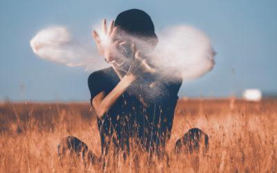 La méditation dans un champs